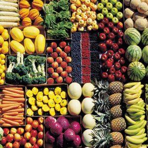 No alla carne, si ai vegetali? Saccenza vs scienza