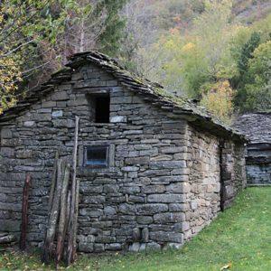 una casa nel bosco