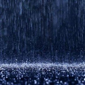 Una notte piovosa