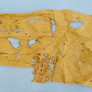 Egitto: scoperto velum di Tolomeo XII