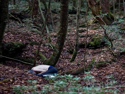 Aokigahara, la foresta giapponese dei suicidi art