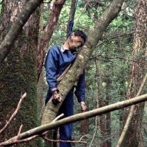 Aokigahara, la foresta giapponese dei suicidi evi
