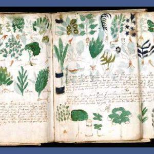 Le pagine perdute di Ugo Nasi, il segreto dell'immortalità