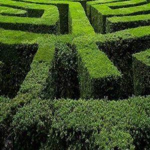 Nel labirinto, l'ultimo affascinante romanzo di Sigge Eklund