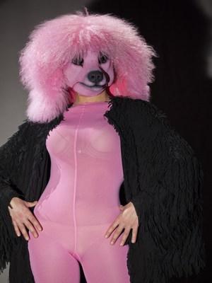 """Una commedia con canzoni e cane: """"Madame Pink"""" al Mercadante"""