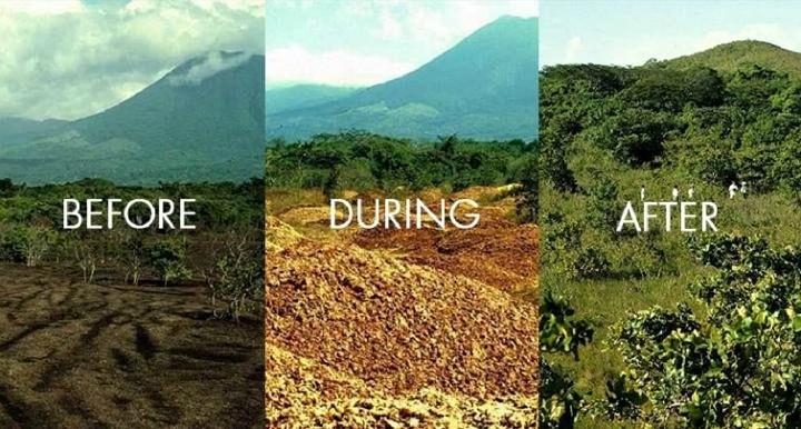 In Costarica la natura fa miracoli