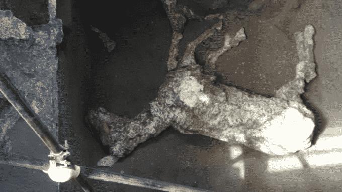 Una nuova scoperta archeologica a Pompei, riemerge il calco di un cavallo