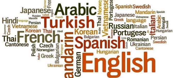 Idiomi: uso, caratteristiche e varietà della lingua