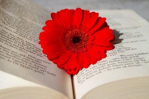 Maudit: i poeti maledetti sulla soglia della modernità
