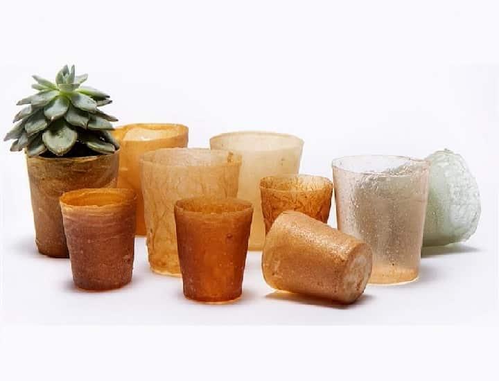 Bioplastiche e plastiche biodegradabili