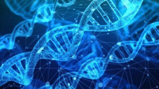 genetica e comportamento: esiste il libero arbitrio?