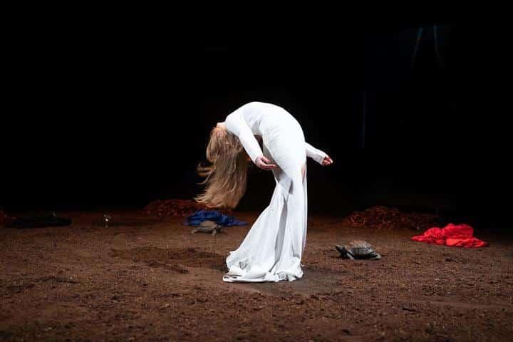 Resurrexit Cassandra