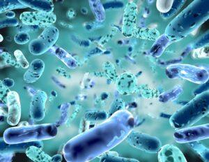 Sistema immunitario ecco come rinforzarlo in modo efficace