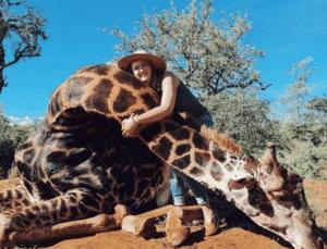 Uccide una giraffa e regala il cuore per San Valentino