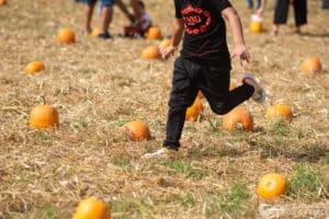 Il Giardino delle Zucche - Pumpkin Patch, un'oasi arancione a Pignataro Maggiore